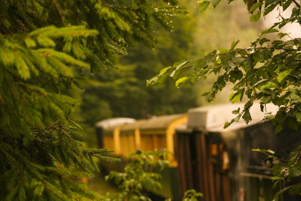 old train trip4