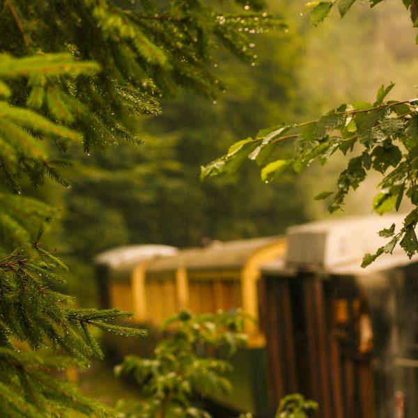 old train trip