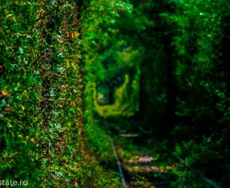 tunnel of love - romania © freestate