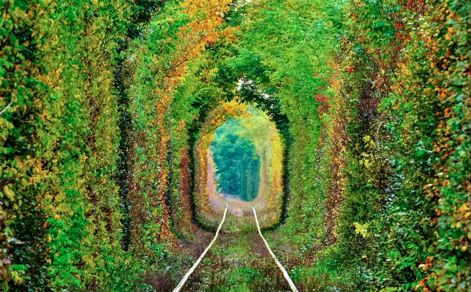 tunnel of love © freestate